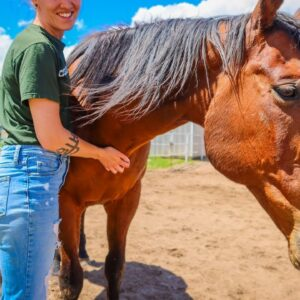 ADOPTING A HORSE FROM A RESCUE 🐴 My First Horse | Natalia Leigh